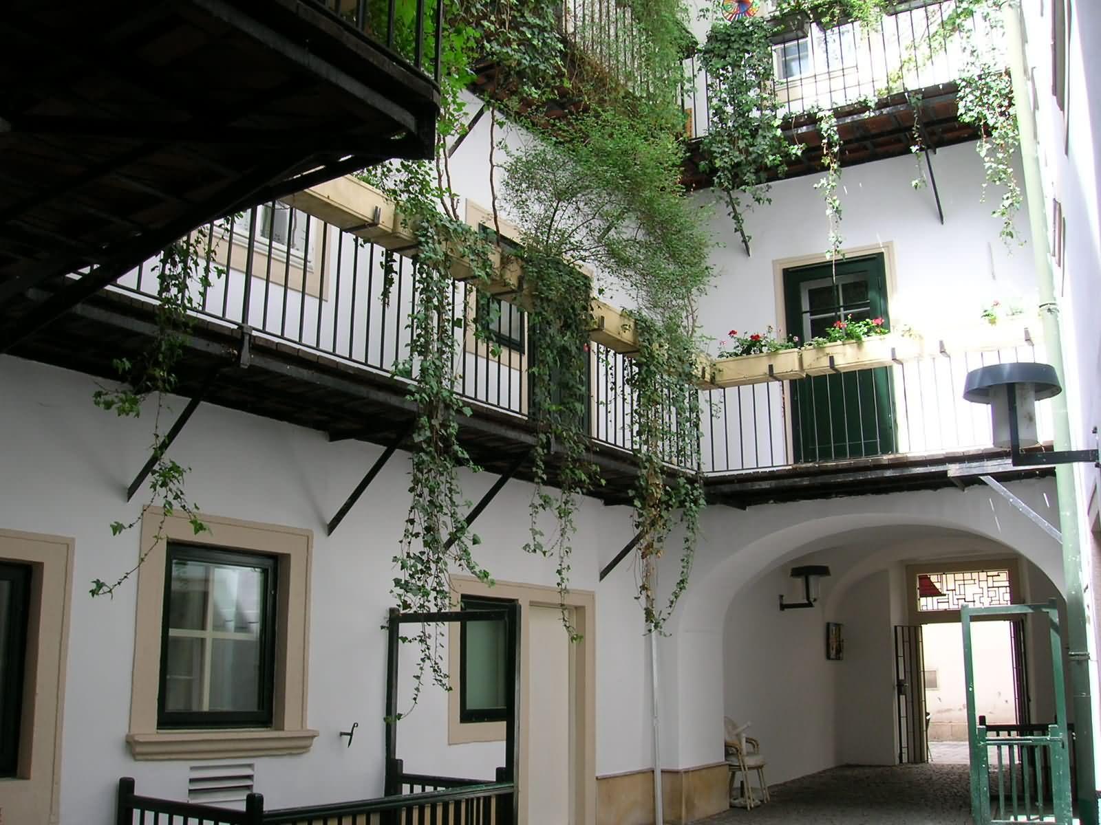 Виена – от шумните улици към тихите вътрешни дворове 2