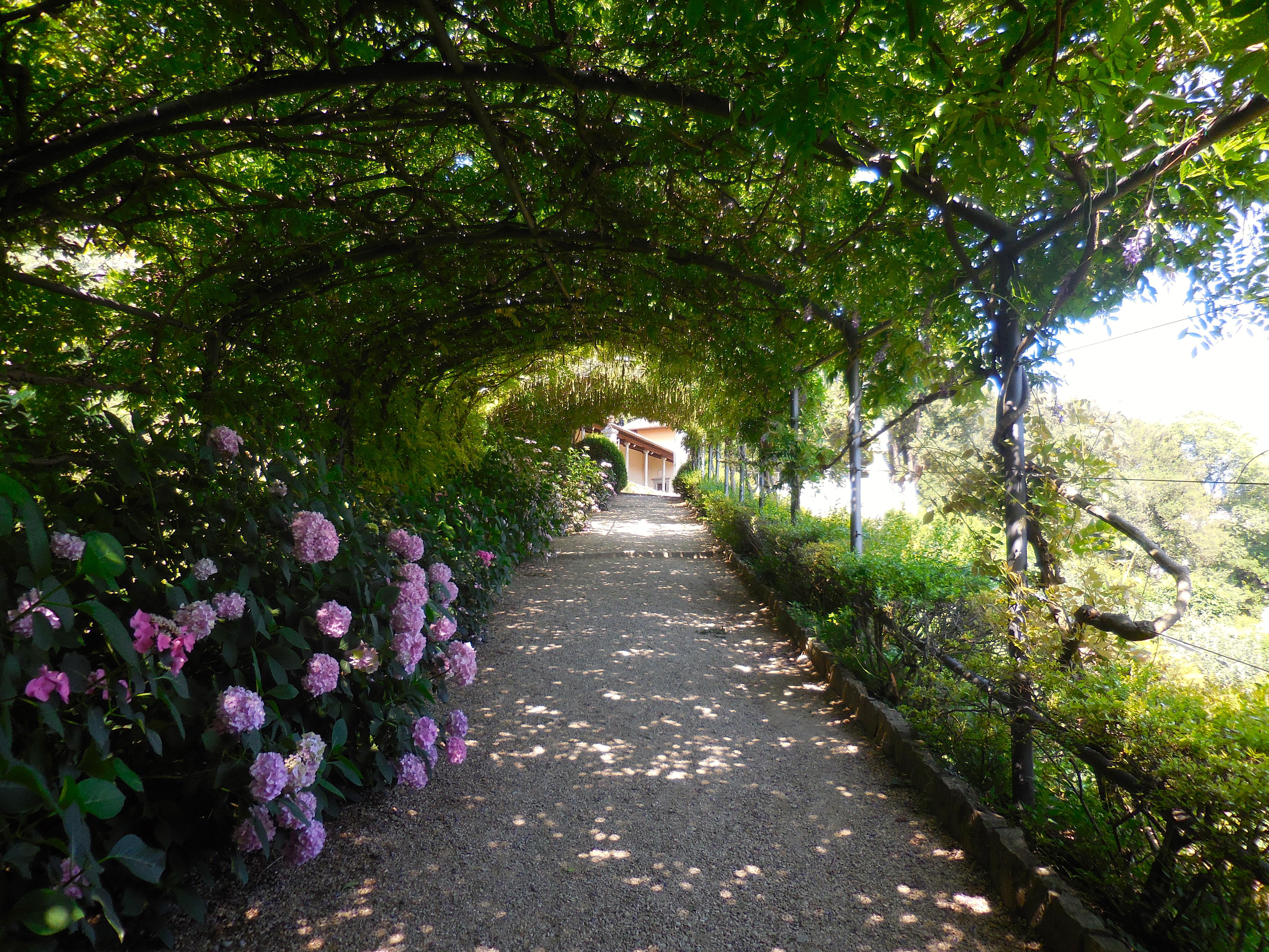 gardens Pisa