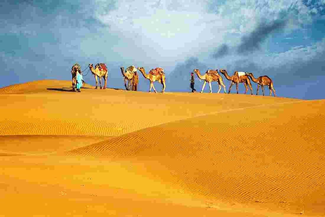 Бедуини с камили