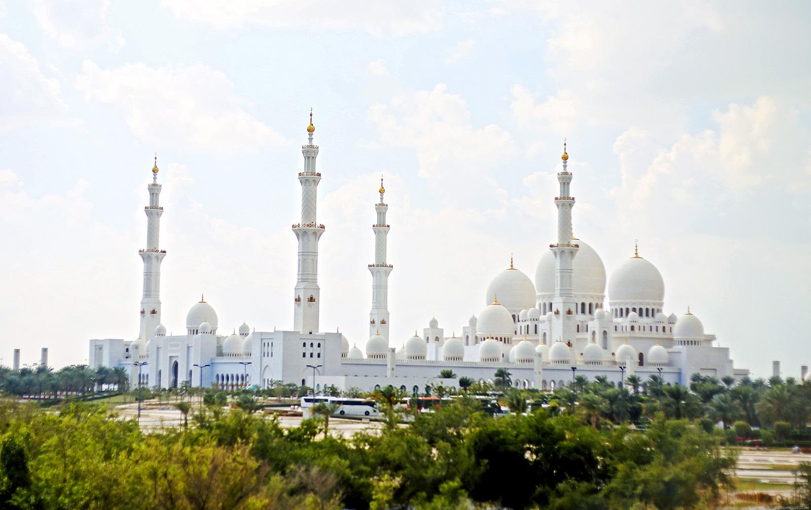 Абу Даби - Бащата на газелата - 11