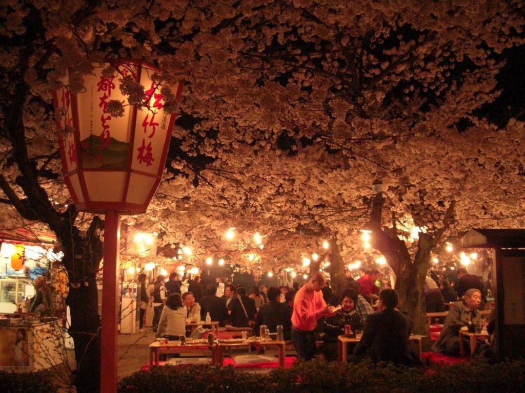Сакура - вълшебният природен феномен в Япония 8