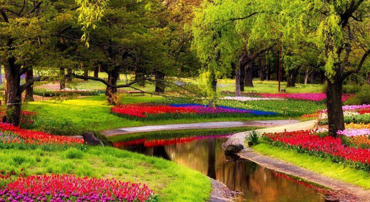 Цветната магия на парка Кьокенхоф