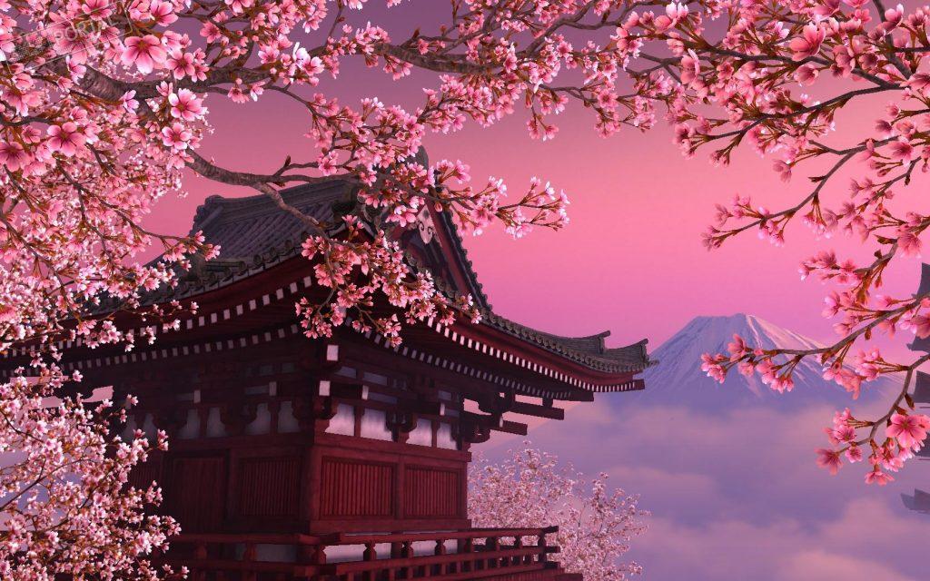 Сакура - вълшебният природен феномен в Япония 1