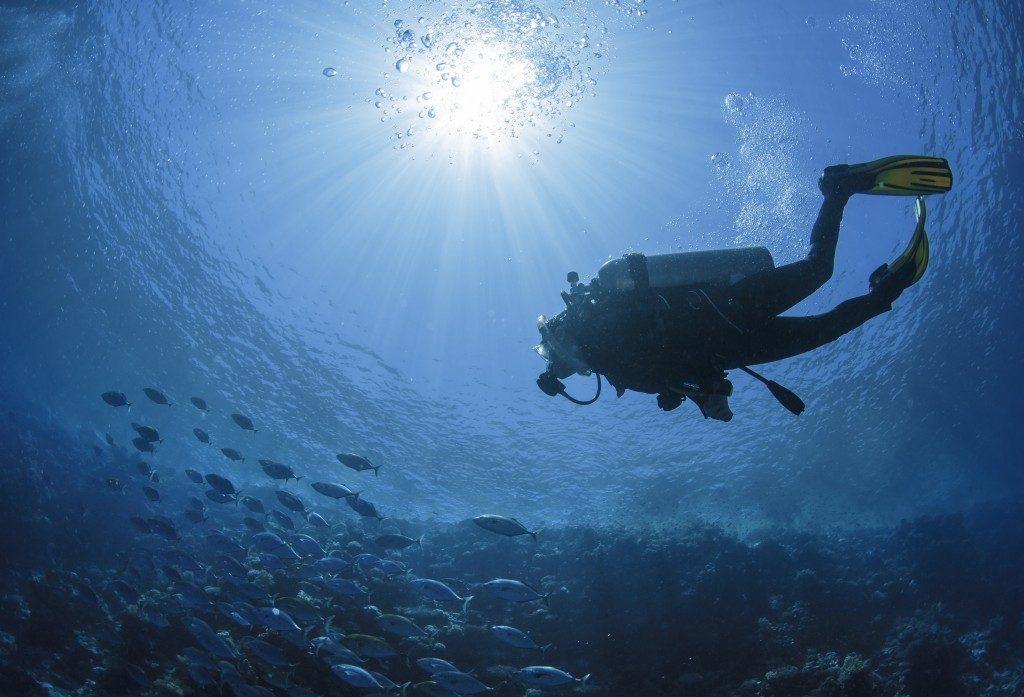 Подводна винарна – нима е възможно? - 6