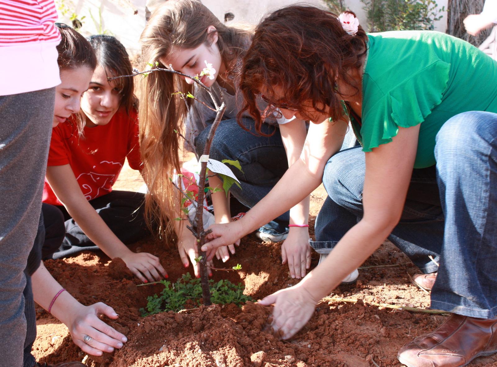 Всеки трябва да посади дърво