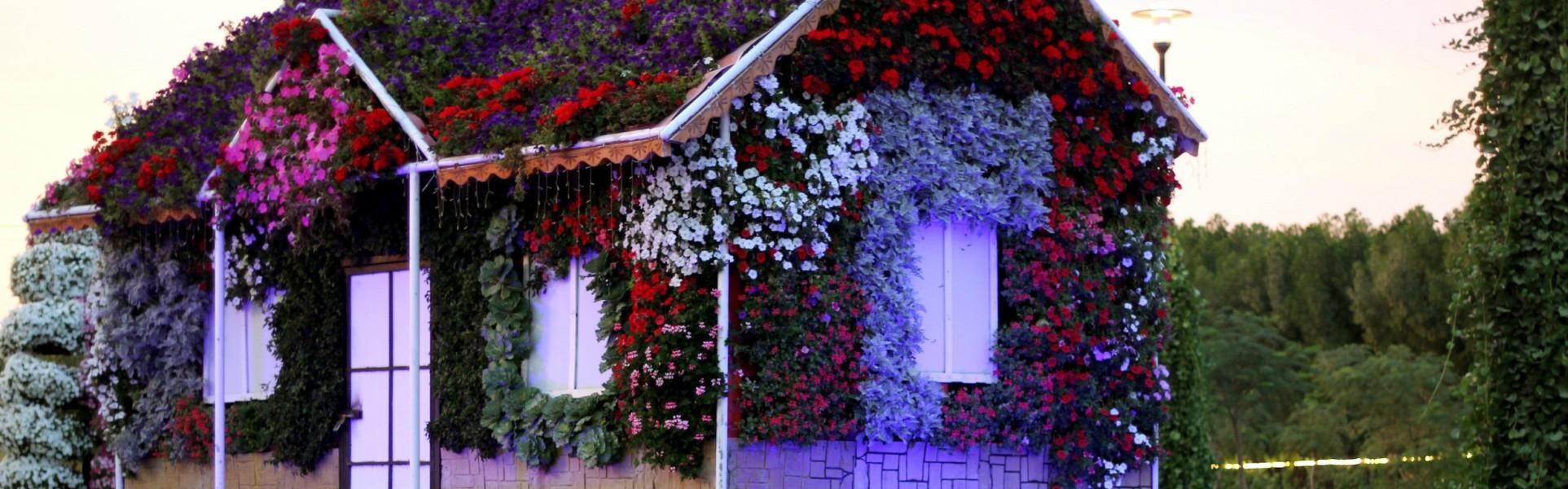 dubai-miracle-garden-1235962-1