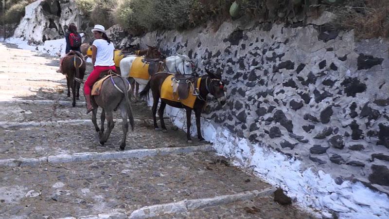 Тюркоазеният остров Санторини – 10 причини да го посетите - 10 - Руал Травел