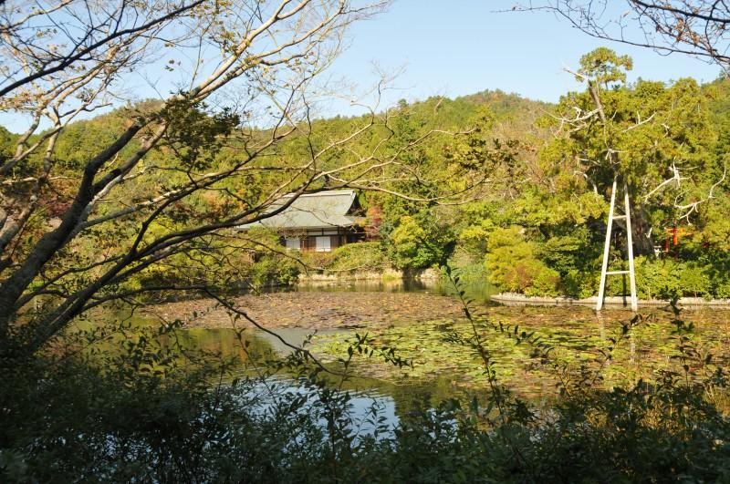 "Киото, храм ""Рьоанджи"""
