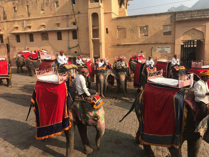 Фотопътепис Индия – страната на цветовете и древните култури 19