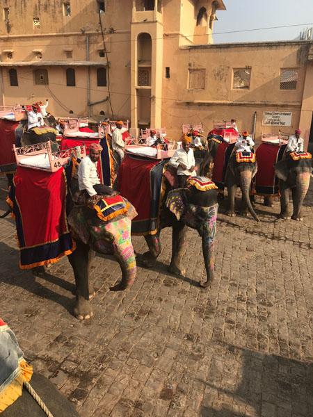 Фотопътепис Индия – страната на цветовете и древните култури 20