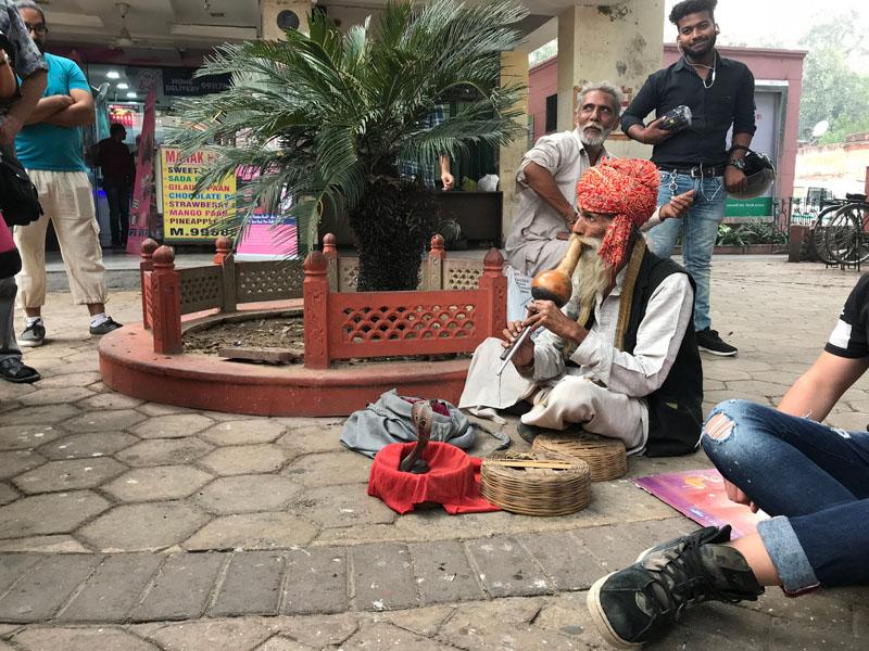 Фотопътепис Индия – страната на цветовете и древните култури 40