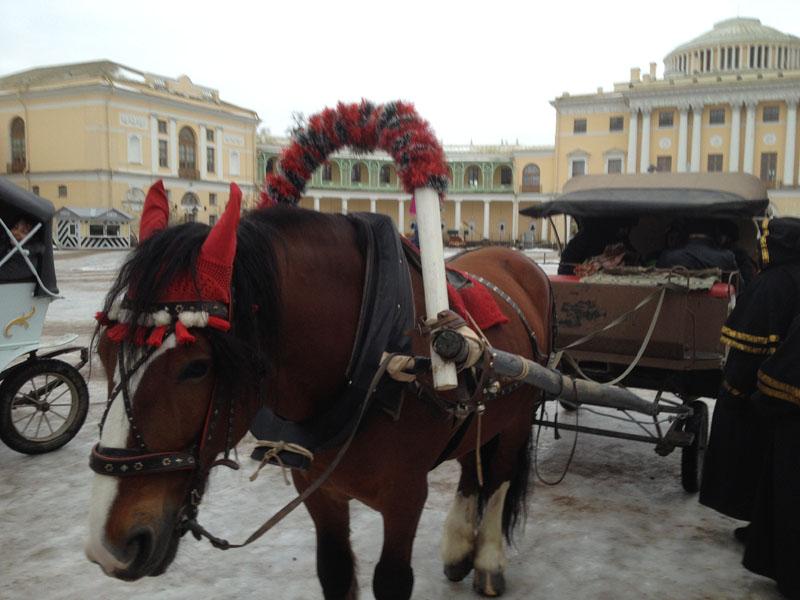 Фотопътепис – Москва и Санкт Петербург Нова година 16