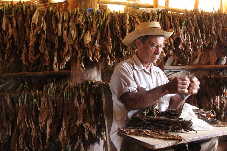 Очарованието на Куба – сега е моментът да го откриете 12