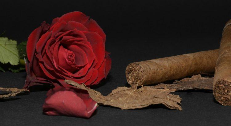 Винялес – Долината на пурите