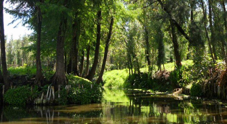 Сочимилко – мексиканската Венеция