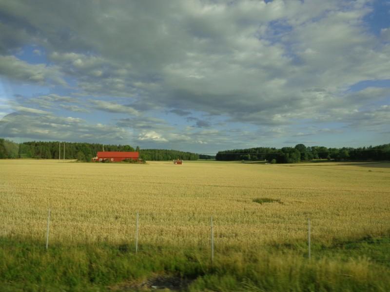 Дивните поля на областта Сконе - Швеция