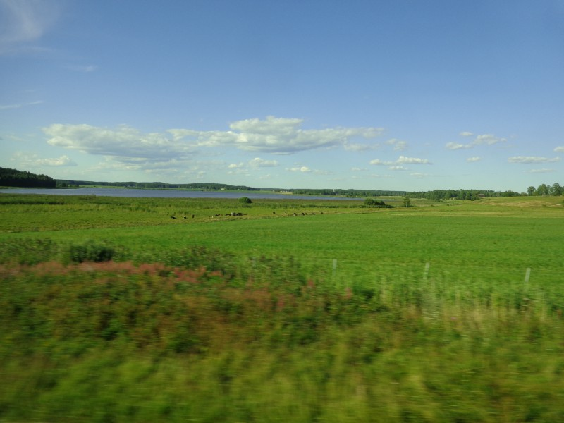 Безброй са езерата в Швеция