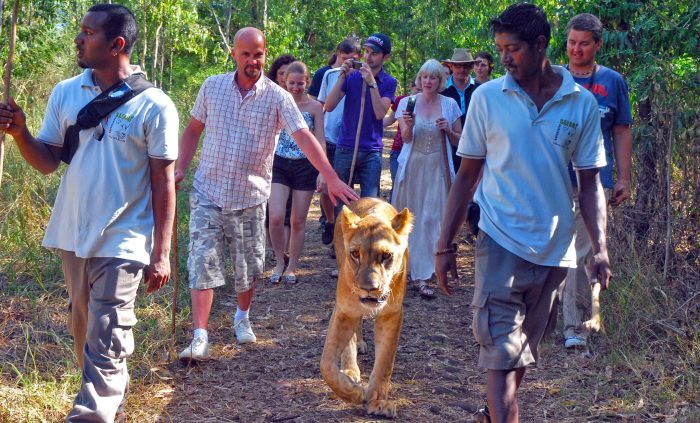 8 незабравими неща, които да преживеете на остров Мавриций - 7
