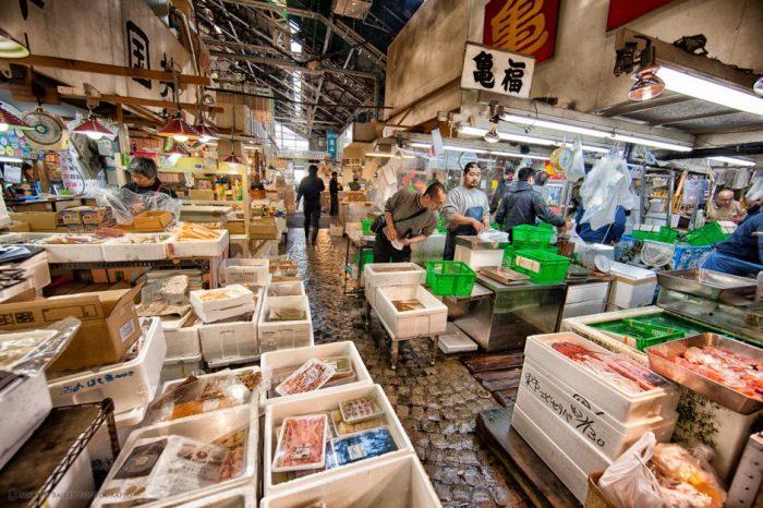 Пазарът за риба и морски дарове  в Токио – скъпото удоволствие 2