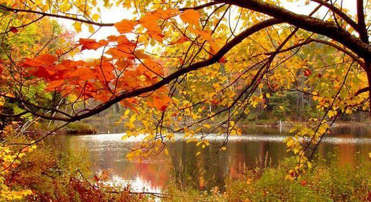 Златната есен – живописна и топла