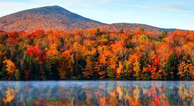 Есенните пейзажи – успокояващи и вдъхновяващи