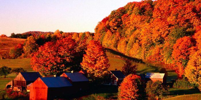 Есенните пейзажи - успокояващи и вдъхновяващи - 2
