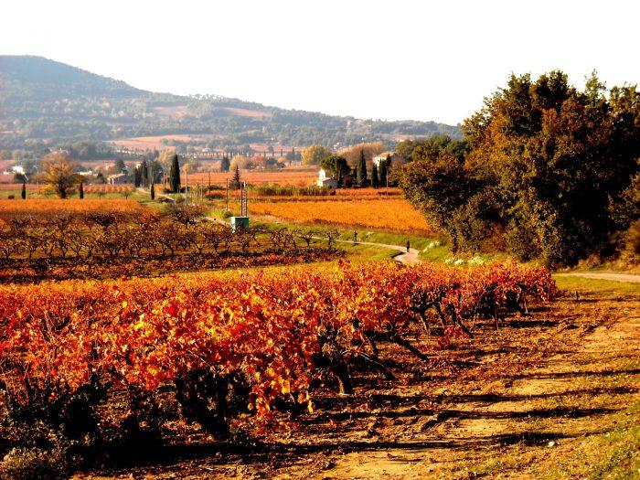 Есенните пейзажи - успокояващи и вдъхновяващи - 4