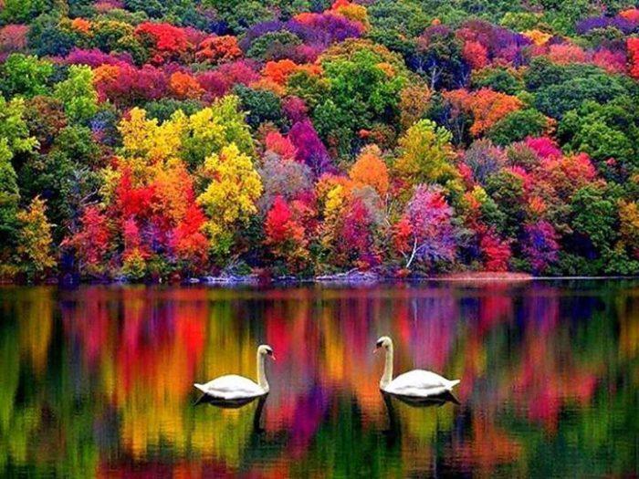 Есенните пейзажи - успокояващи и вдъхновяващи - 7