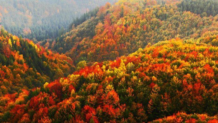 Есента и  къде да пътуваме - 1