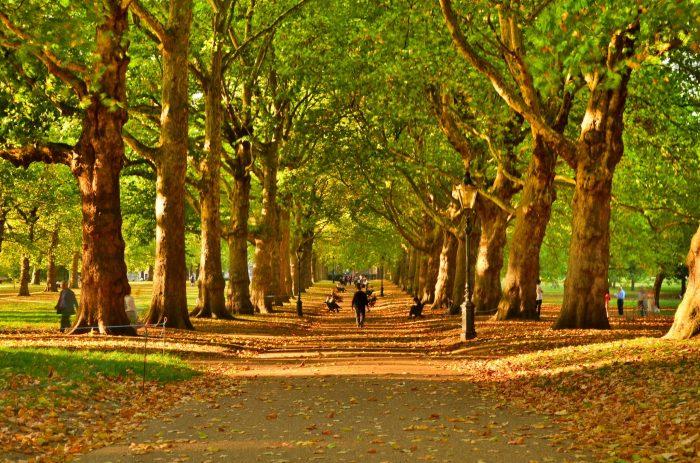 Есента и  къде да пътуваме - 4
