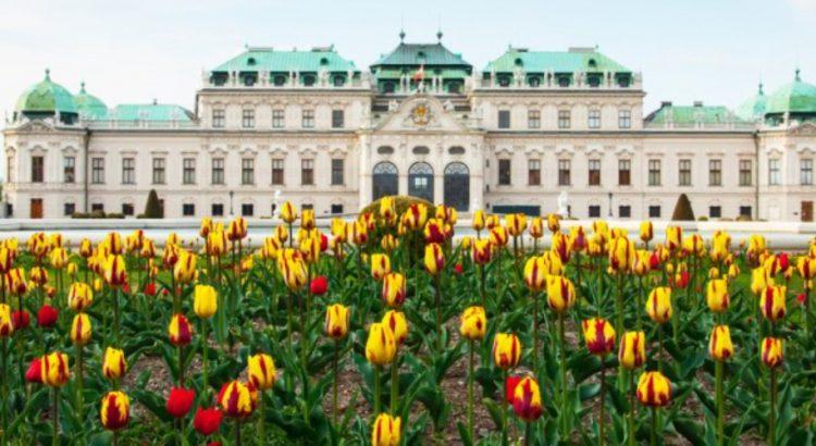 Дворецът Белведере – любимецът на виенчани