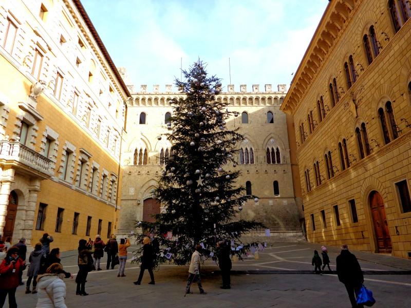 Коледните елхи на Тоскана 1