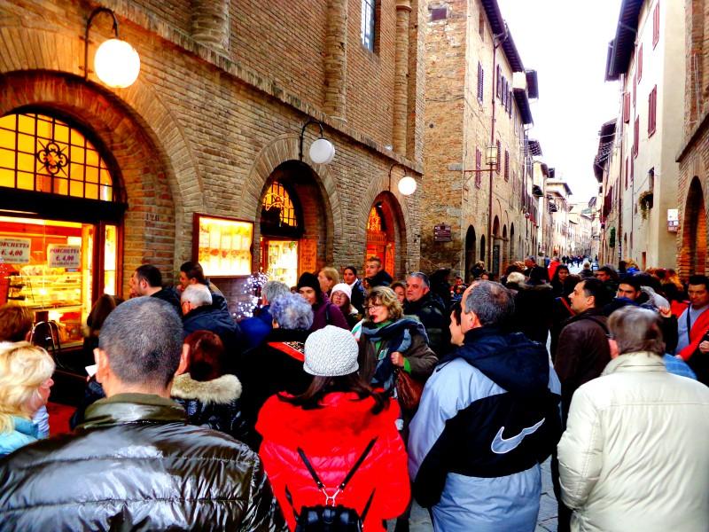 Коледните елхи на Тоскана 13