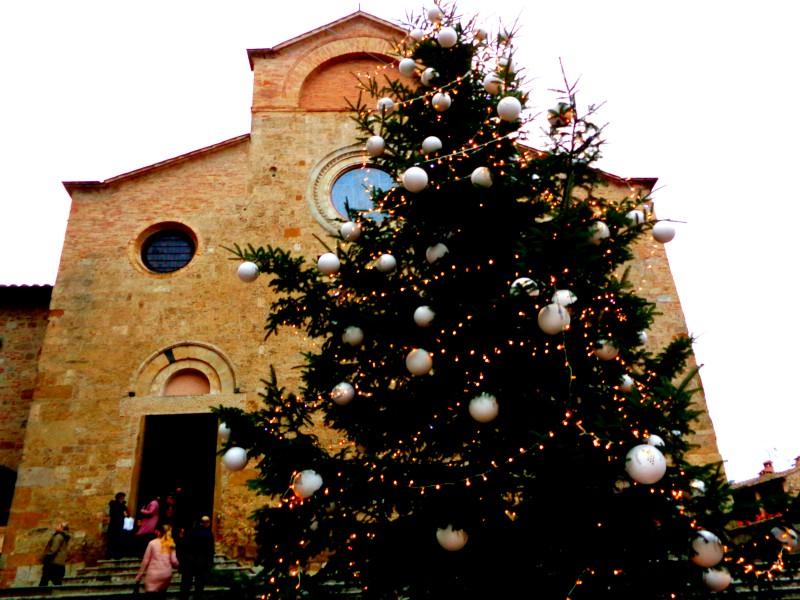 Коледните елхи на Тоскана 14