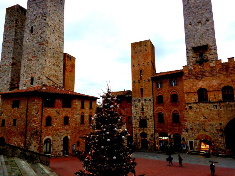 Коледните елхи на Тоскана 15