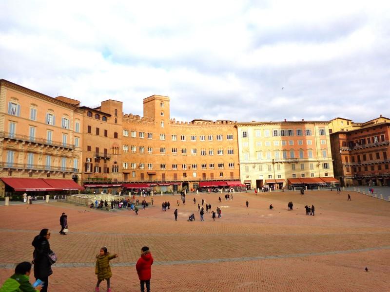 Коледните елхи на Тоскана 7