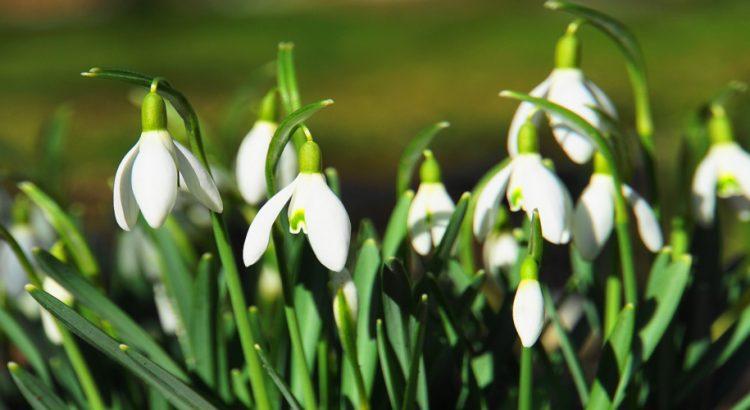 Пролетни празници 2019