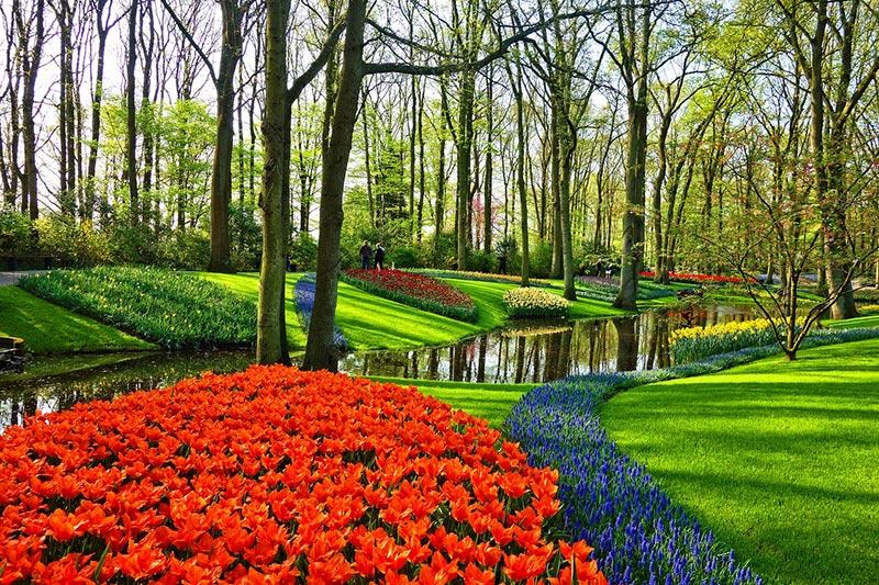 Кукенхоф - градините на Европа 2