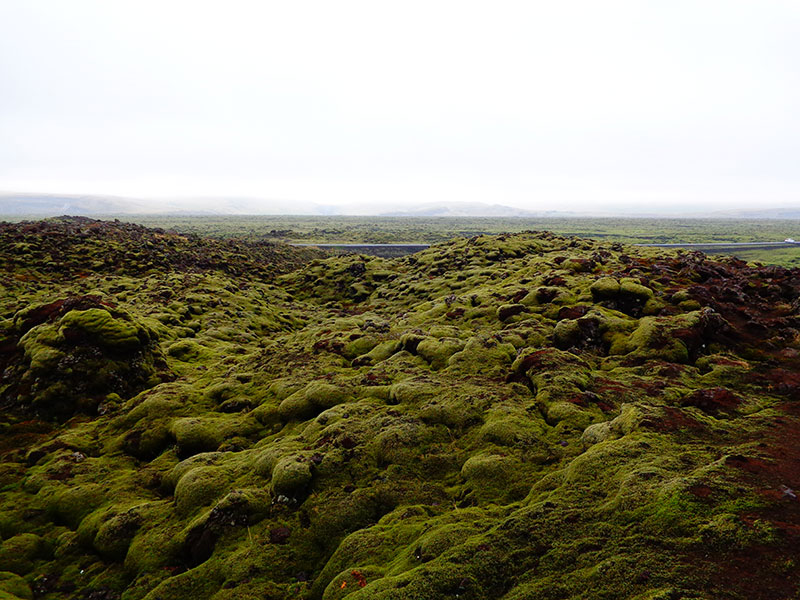 Фотопътепис за Исландия - май 2019 15
