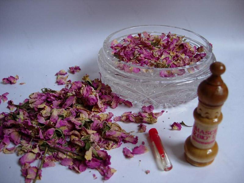 Маслодайната роза – нашето богатство 7