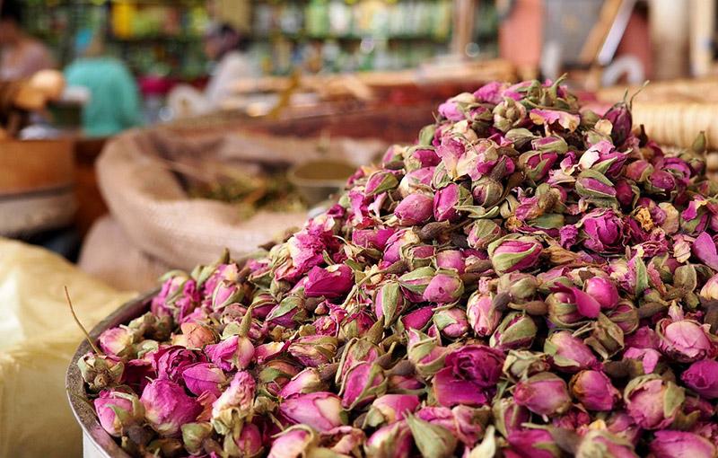 Маслодайната роза – нашето богатство 6