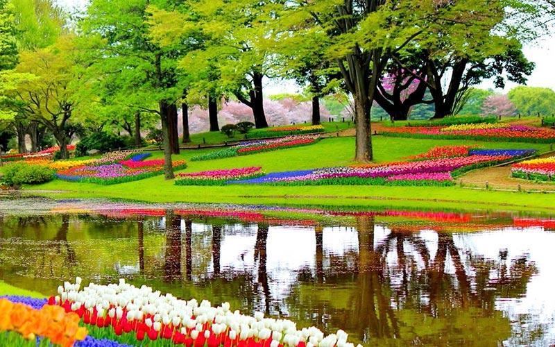 Цветни градини: Кои са най-красивите по света 1