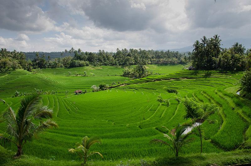 Остров Бали - почивка за душата 12