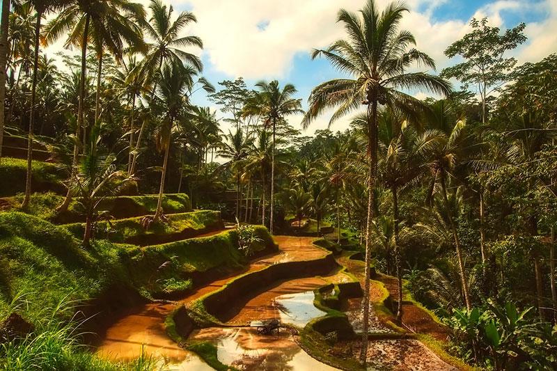 Остров Бали - почивка за душата 2