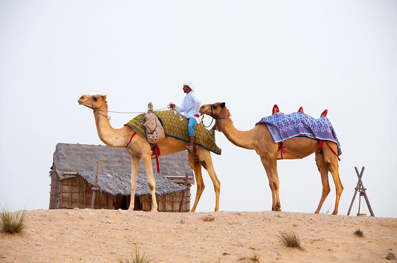 Какво трябва да знаем при пътуване в Дубай 2