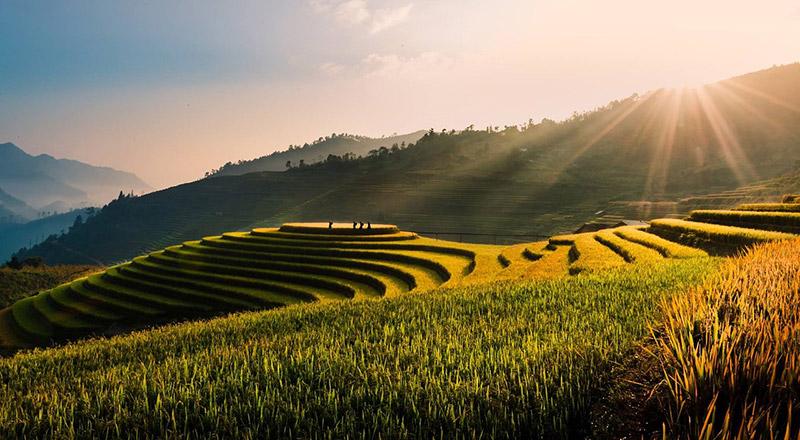 Виетнам – един от азиатските тигри 5