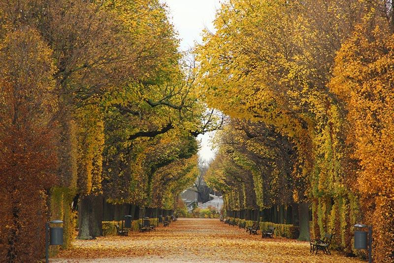 Десет най-подходящи дестинации в Европа през есента 4