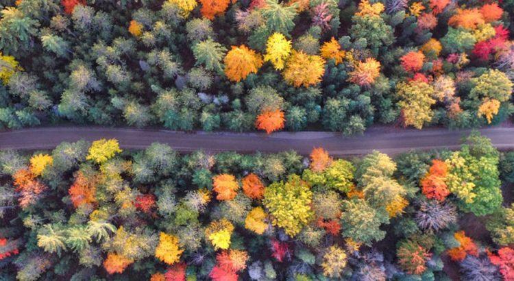 Десет най-подходящи дестинации в Европа през есента
