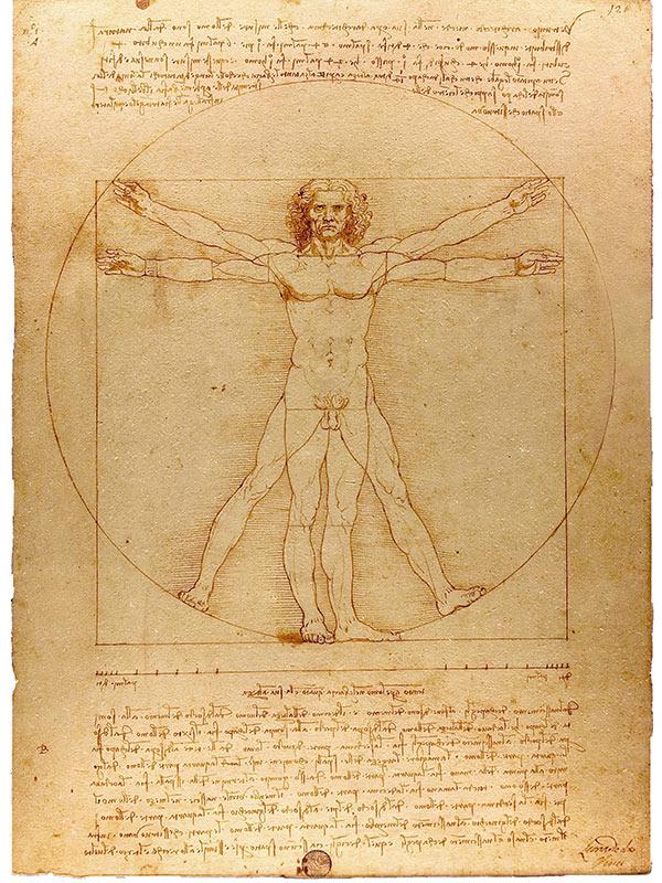 Леонардо да Винчи в Лувъра 3