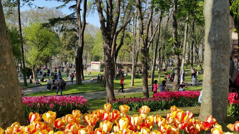 Международен фестивал на лалетата в Истанбул 5